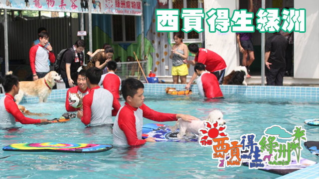 西貢得生綠洲寵物樂園